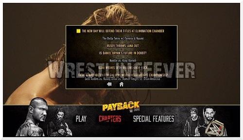 wrestlingfever dvd review 79 wwe payback 2015 wrestlingfever de. Black Bedroom Furniture Sets. Home Design Ideas